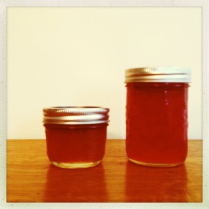 Pocket Alchemy Jelly and Jam